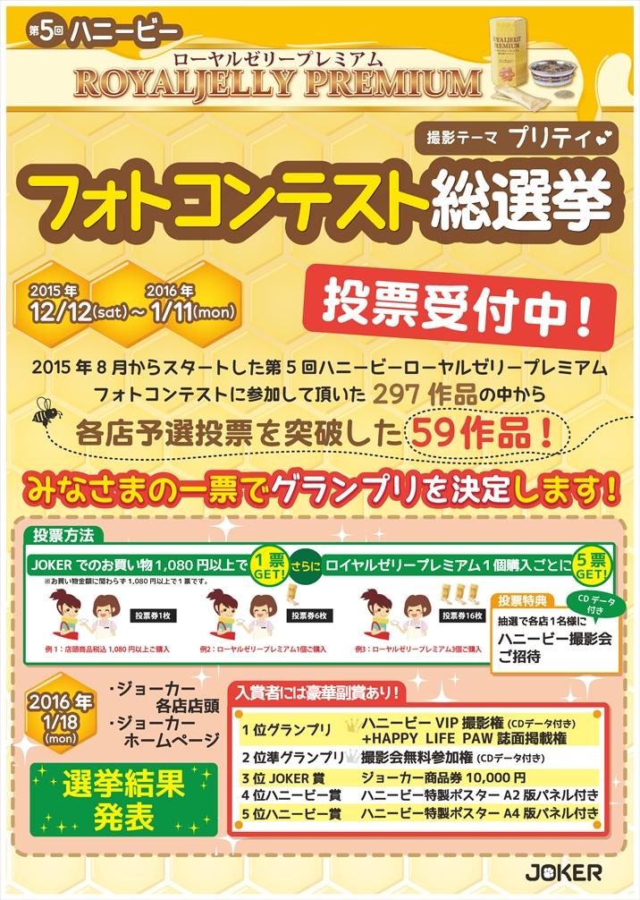 2015フォトコン総選挙POP12.8フォトコンテスト総選挙
