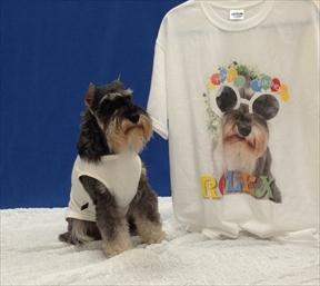 IMG_1654Tシャツ