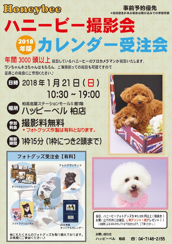 th_カレンダー受注撮影会_ハッピーベル柏店(1月)