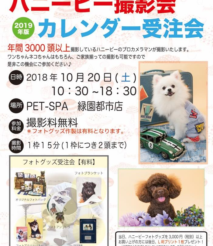 th_ハニービー撮影会_PET-SPA緑園都市店(10月)