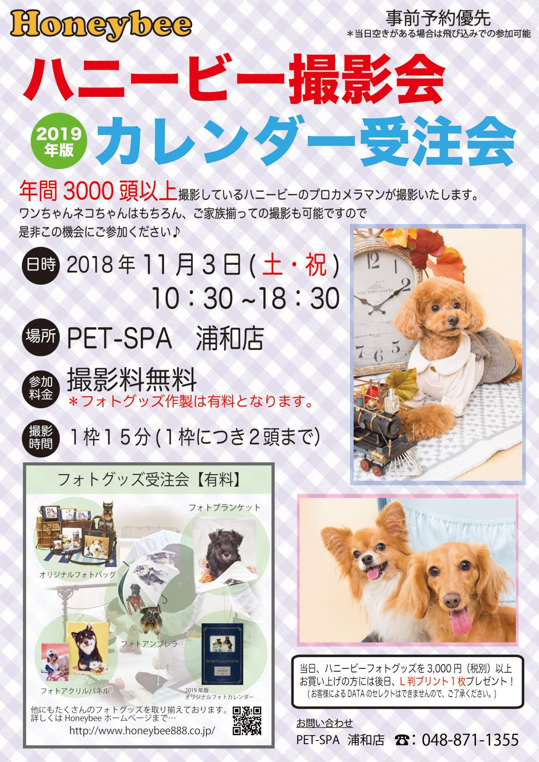 th_ハニービー撮影会_PET-SPA浦和店(11月)