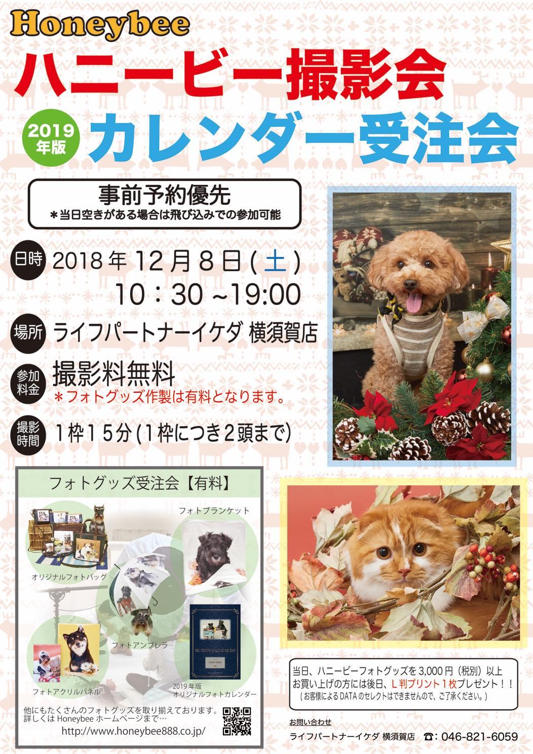 th_ハニービー撮影会_ライフパートナーイケダ横須賀店(12月)